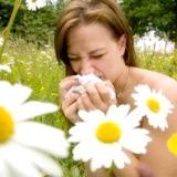 Фото - Фото - Алергія на цвітіння причини і лікування