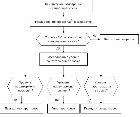 Фото - схема діагностики гипопаратиреоза