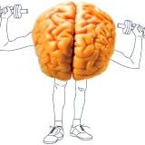 Фото - Фото - Ігри для розвитку пам'яті в мозку