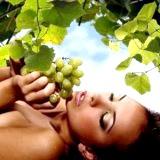 Фото - Фото - Використання винограду як косметичного засобу