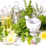 Фото - Фото - Лікарські трави для здоров'я та схуднення