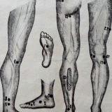 Фото - Фото - Масаж рефлексогенних зон ніг