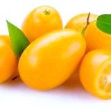 Фото - Фото - Корисні властивості фрукта кумкват або Фортунелла