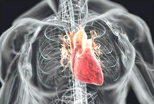 Фото - одне з головних наслідків сколіозу - серцева недостатність