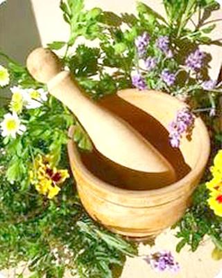 Фото - Настій рослин