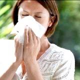 Фото - Фото - Симптоми захворювання алергічний риніт