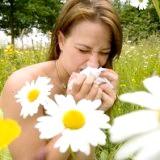 Фото - Фото - Трав'яні збори при алергічних реакціях