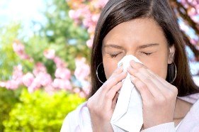 Фото - Алергічна реакція організму на пилок рослин