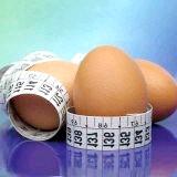 Фото - Фото - Захворювання, які передаються через куряче яйце