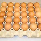 Фото - Фото - Сирі курячі яйця Корисні Властивості